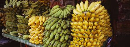 Bunches of banana on a market stall