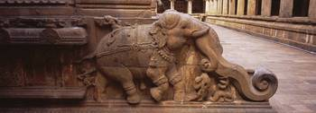 Statue of elephant carved on the wall of a temple
