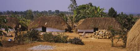 Thatched roof buildings in a village
