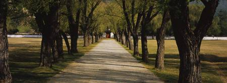 Path leading towards a palace