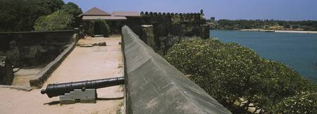 Cannon pointing through the walls of a fort