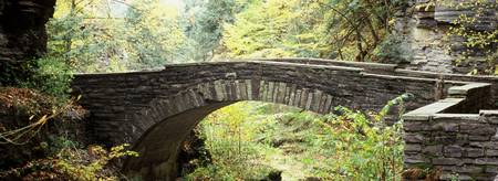 Arch bridge in a forest Robert H. Treman State Pa