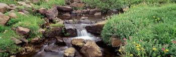Waterfall Steens Mountain Area OR