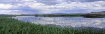 Malheur National Wildlife Refuge OR