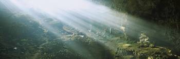 Sunbeams shining on rocks