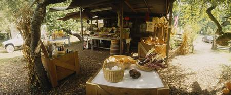 Fruits and vegetable stand under a shade