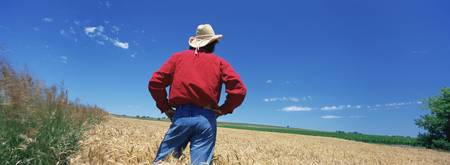 Rear view of a farmer standing in a field