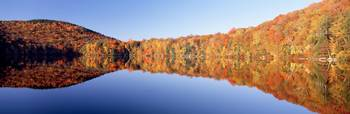 Fall Mirror Image Reflections