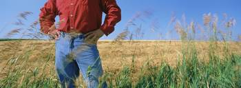 Mid section view of a farmer in an oat field