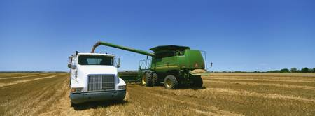 Combine in a wheat field