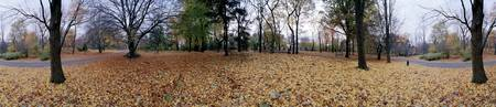 360 degree view of an urban park Central Park Man