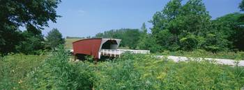Covered bridge in a forest