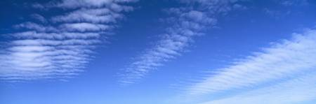 Cirrocumulus clouds in the sky