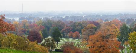 High angle view of a cemetery