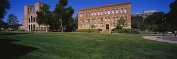 Lawn in front of a Royce Hall and Haines Hall Uni