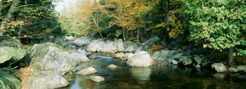 North Fork River NY
