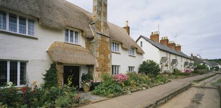 Row of cottages in a village