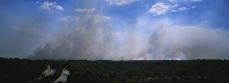 Smoke emitting from the forest fire