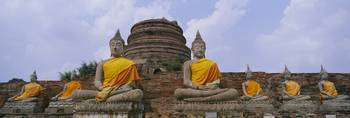 Low angle view of statues of Buddha in a temple