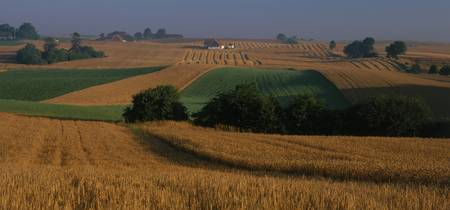 Farmland Sweden