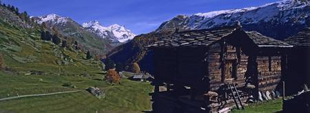Log cabins on a landscape