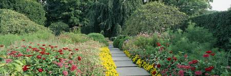 Flower bed in a formal garden