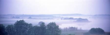 Foggy Landscape Northern Germany
