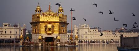 Temple at the waterfront Golden Temple Amritsar P