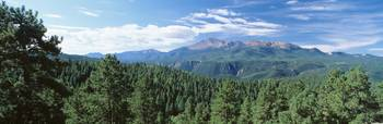 Trees in front of pikes peak mountain