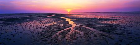 Sunset Mud Flats North Sea