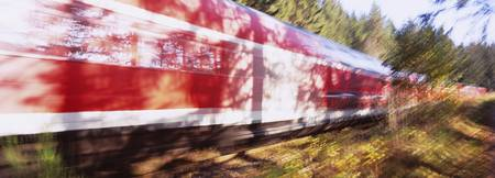 Red commuter train passing through a forest