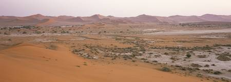 Panoramic view of sand dunes viewed from Big Dadd