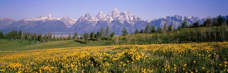 Teton Range Grand Teton National Park WY