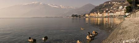 Town at the lakeside Nobiallo Lake Como Como Lomb