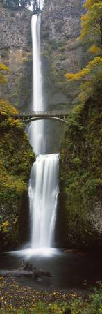 Low angle view of a waterfall Multnomah Falls Col