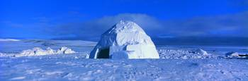 Igloo Arctic