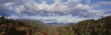 High angle view of White Mountain National Forest