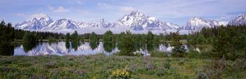 Spring Grand Teton National Park WY