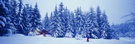 Whistler British Columbia Canada