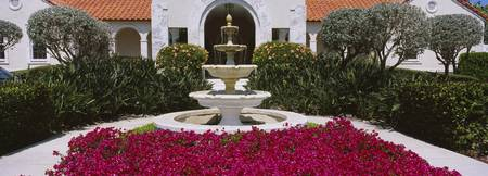 Azaleas growing near a fountain in a garden