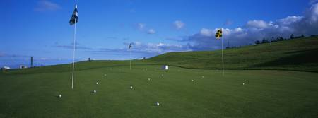 Golf flags and golf balls in golf course