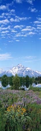 Grand Teton National Park WY