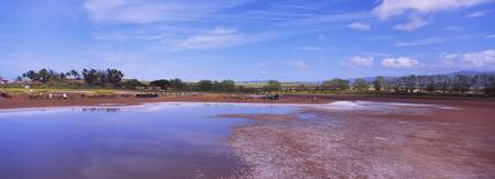 Salt drying on pond