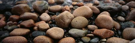Rocks Acadia National Park ME