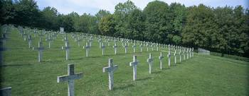Rows of crosses on graves in a cemetery