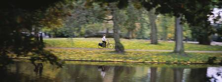 Person riding a bicycle in a park