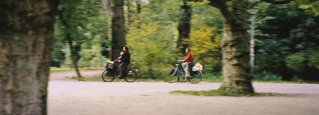 Family riding bicycle in a park