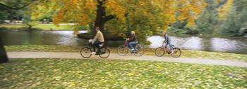 People riding bicycles in a park