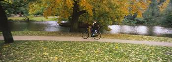People riding a bicycle in the park