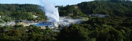 View of Pohutu geyser erupting